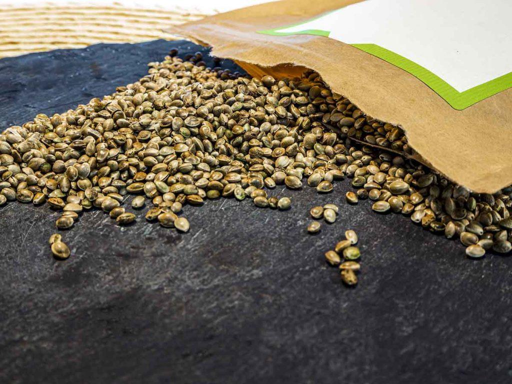 Marijuana Seedkit
