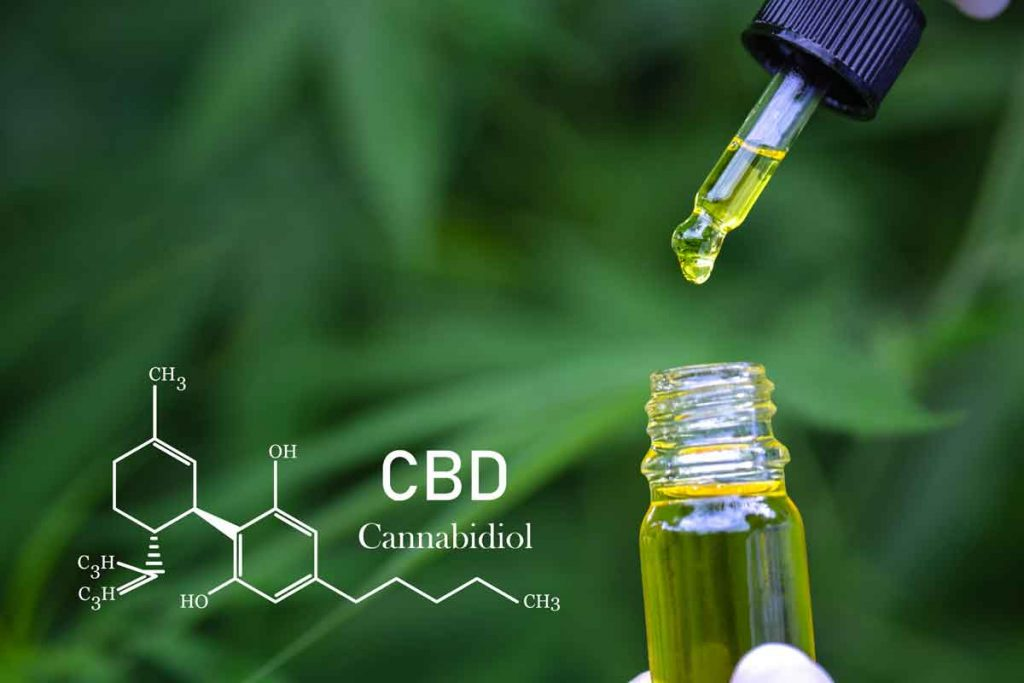 Why is It Important to Check the CBD Level of Marijuana