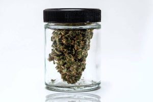How to Store Weed to Prolong its Shelf Life