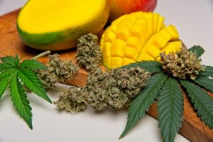 Mango and Weed: Is it a Perfect Combination?