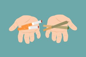 Tobacco vs Marijuana: How Are They Different?
