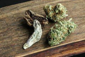 Weed and Mushrooms: Get High With Magic