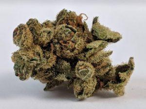 Marijuana Seeds Tips
