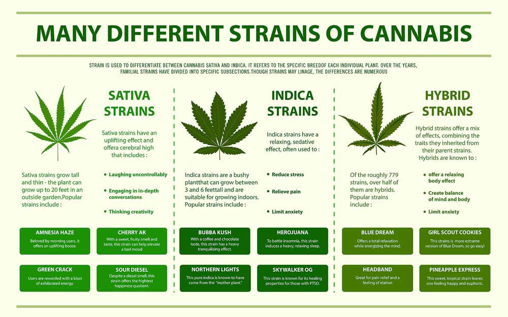 Indica and Sativa Benefits